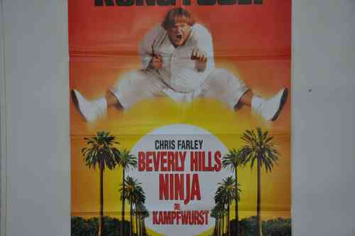 Movie Poster Beverly Hills Ninja Video shop 90s