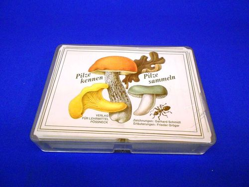 Mushrooms know mushrooms collecting card game DDR