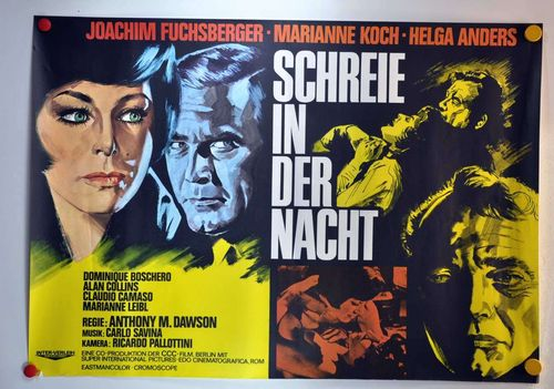 German Movie poster Schreie in der Nacht A0