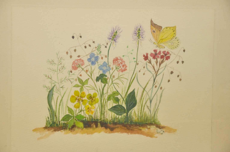 Aquarell Blumenwiese mit Schmetterling im Rahmen um 1960 - KuSeRa